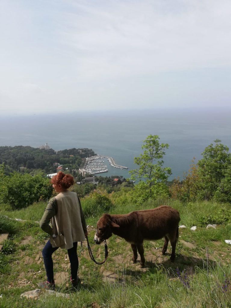 Vista sul golfo di Trieste